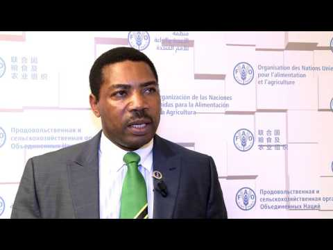 Minister for Agriculture, Livestock and Fisheries, United Republic of Tanzania