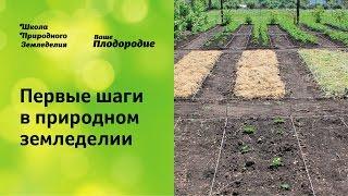 Первые шаги в природном земледелии(, 2014-11-27T09:05:58.000Z)
