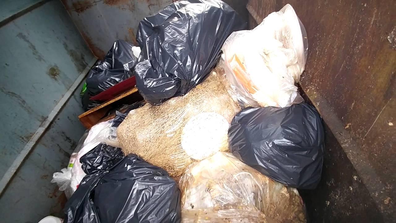 7 Full Trash Bags Of Leaves