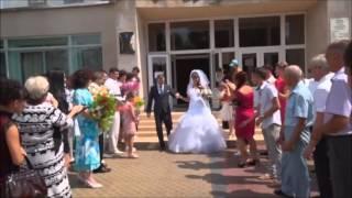 свадьба Алексея и Елены(Любовь стоит того,чтобы ждать2)