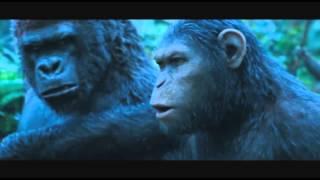 PROфильм. «Планета обезьян» претерпела изменения