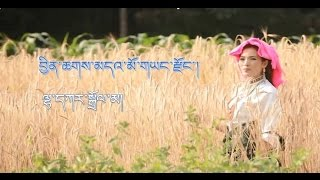 Lhakar Dolma 2014 - བྱིན་ཆགས་མདའ་མོ་གཡང་རྫོང་།