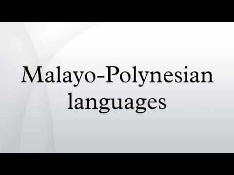 Malayo-Polynesian languages