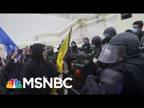 Wallace: Former National Security Officials Call On Trump: 'Make It Stop' | MSNBC