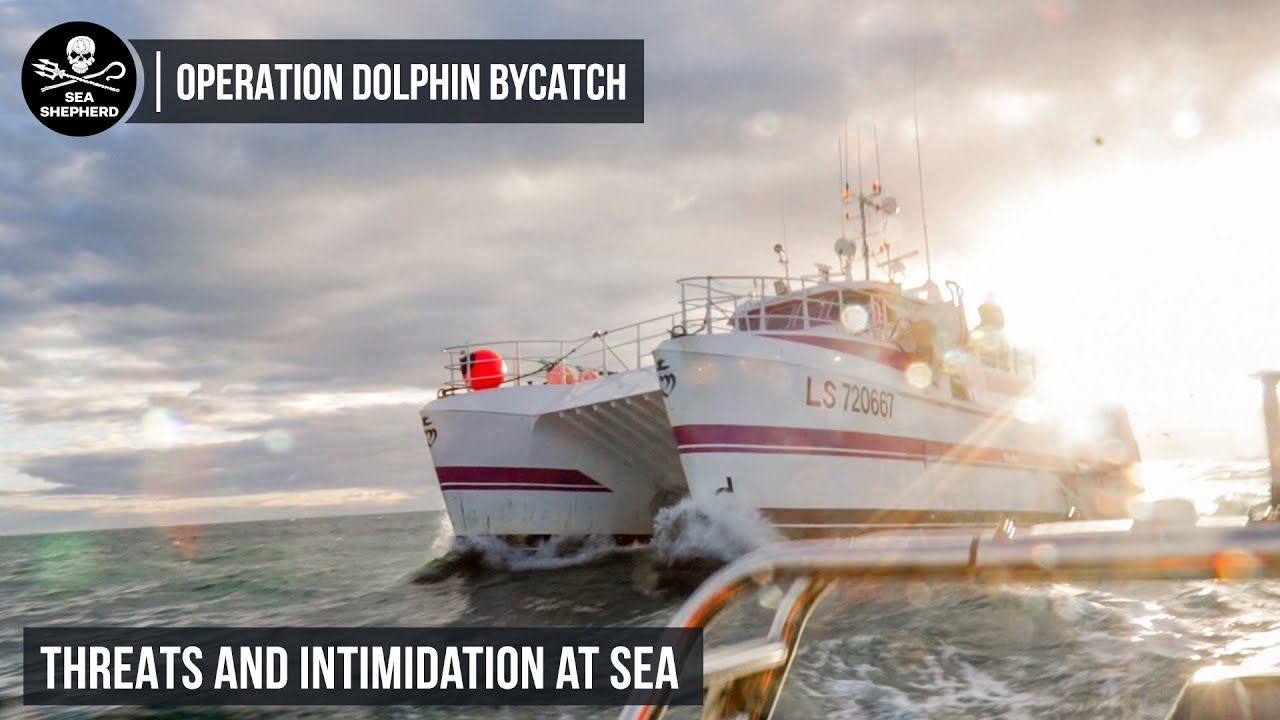 Threats and Intimidation at Sea