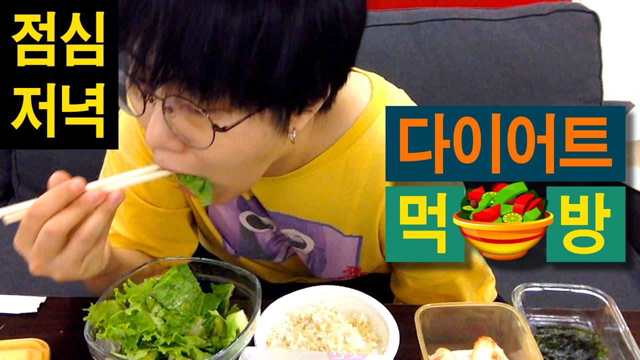 (ENG) 20160818 다이어트 먹방 // 점심,저녁 편 // THIN 띤님