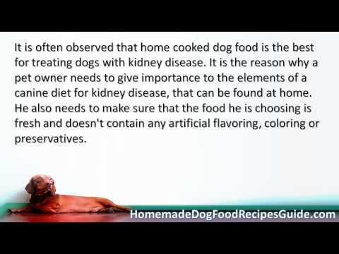 Dog Food Recipes For Kidney Failure