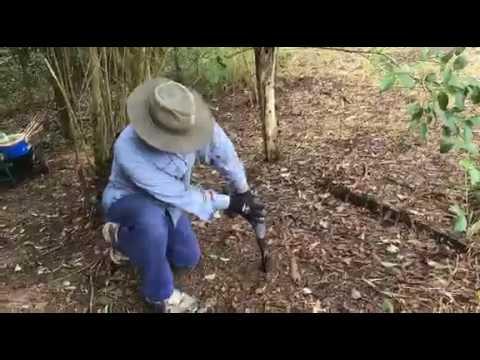 Steve Church video review for Power Planter Australia