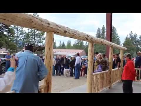 Amish Auction 2015 - Selling Log Cabins