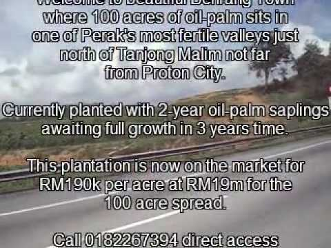 Palm-oil plantation .....100 prime acres for immediate sale .... Behrang, Perak, Malaysia