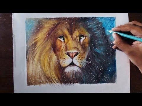 drawing-a-lion-(aslan)---animal-series-3---prismacolor-pencils
