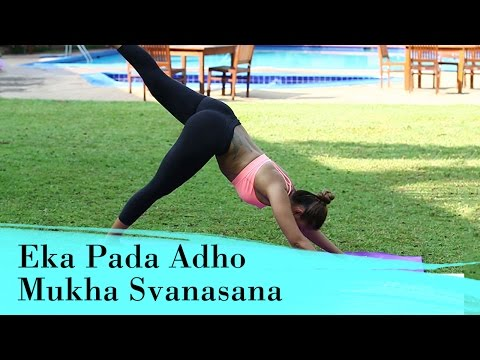 Yoga Asana Eka Pada Adho Mukha Svanasana (One-legged Down Dog Pose) Strengthen Arms & Shoulders