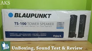 BlauPunkt TS-100 Tower Speaker Review by AKS