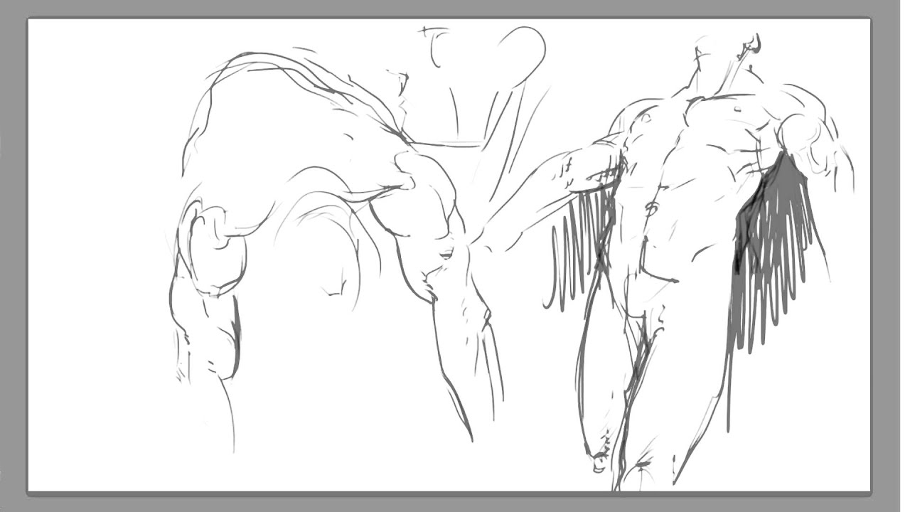Digital male anatomy sketching - YouTube