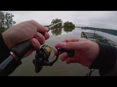Hastings river bream fishing mid north coast australia