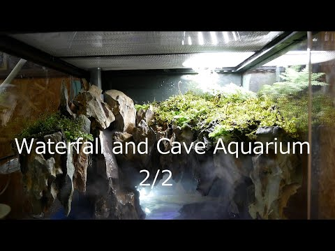 waterfall-and-cave-aquarium-2/2-滝と洞窟のアクアテラリウム後編