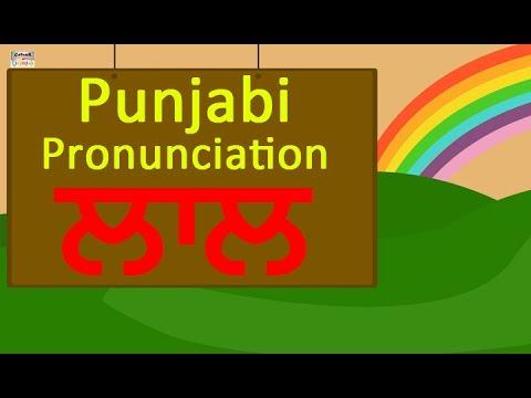 Learn Punjabi Animals And Colors Name For Beginners | Punjabi Language |  Vowels - Matra