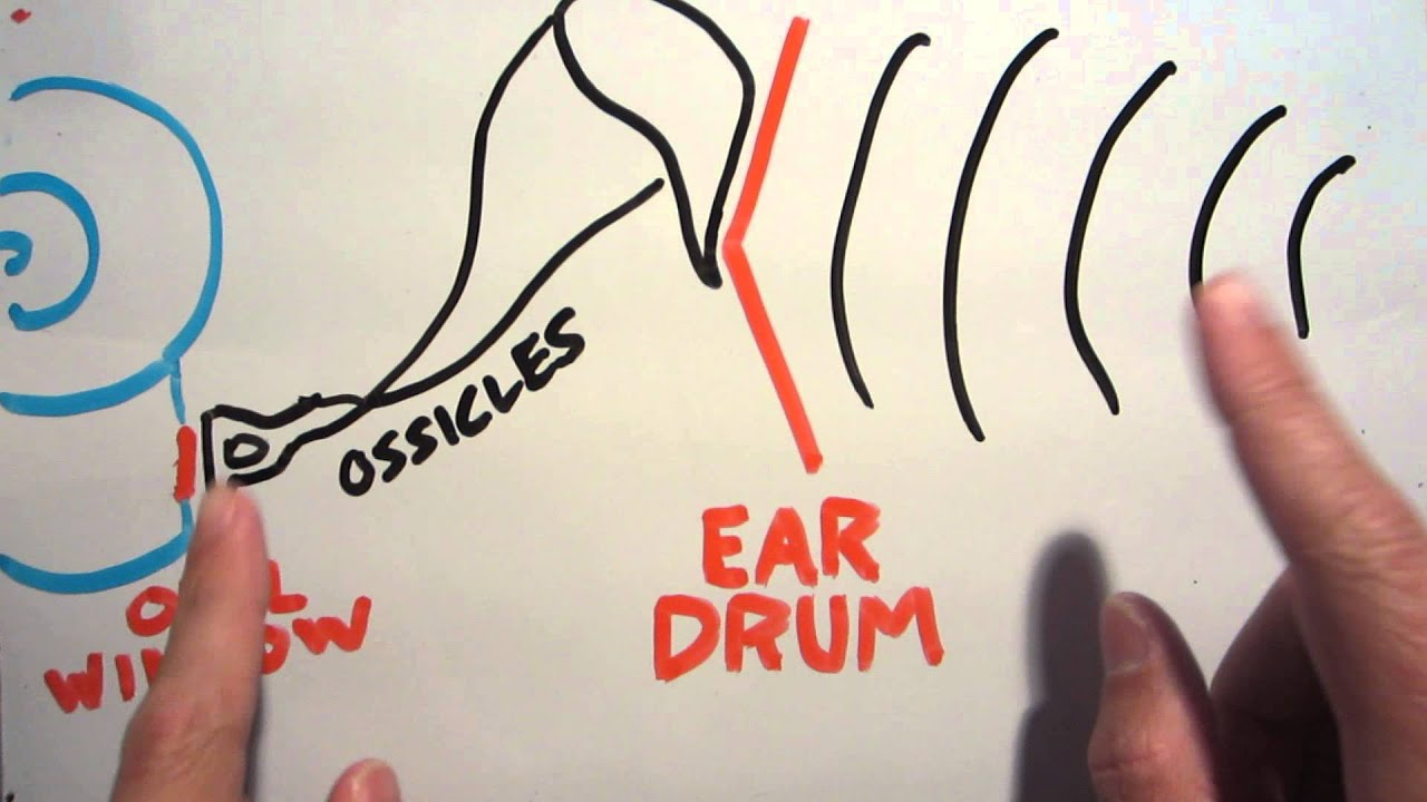 Why ears pop on airplanes (and how to hear someone else's ...