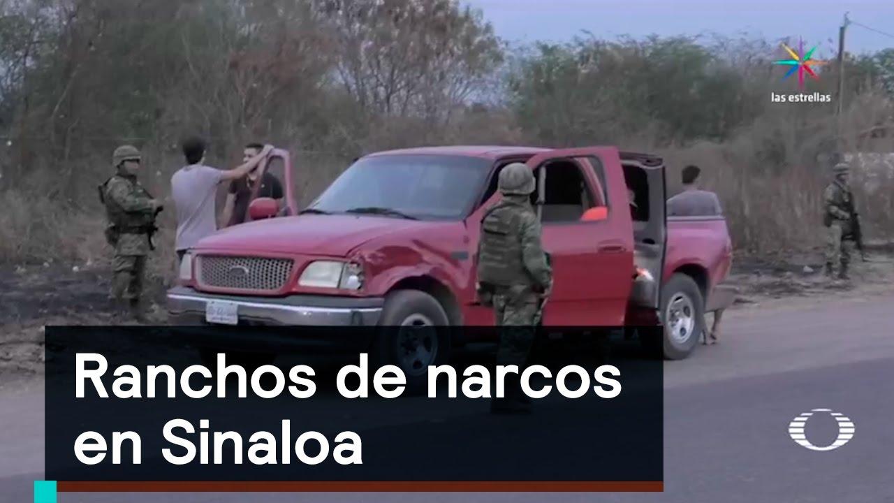 Inseguridad Ranchos De Narcos En Sinaloa Denise Maerker 10 En