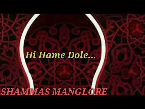 NEW SONG (Mr.SHAMMAS MANGALORE)