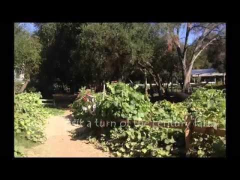 Day Trip Myrtle Creek Botanical Garden And Nursery In Fallbrook California Youtube