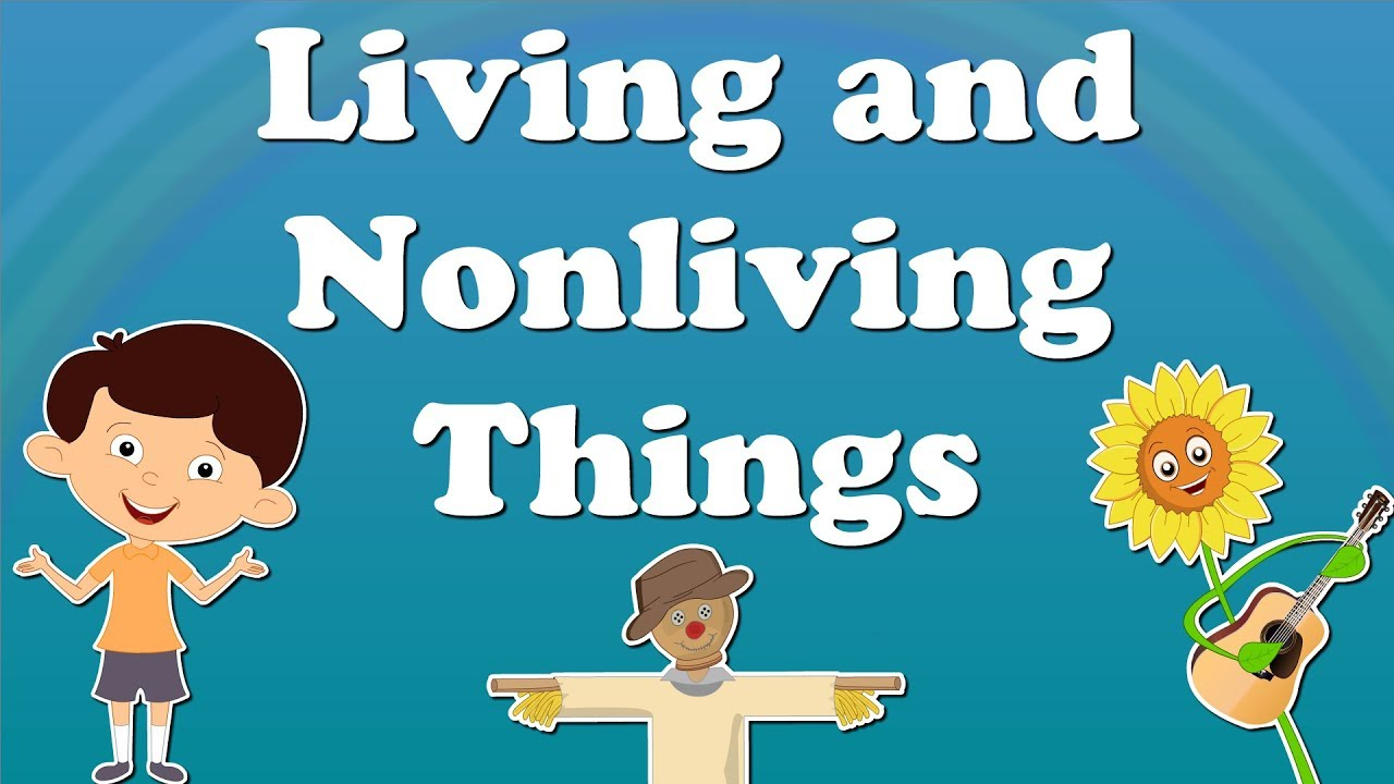 Living And Nonliving Things For Kids Aumsum Kids Education