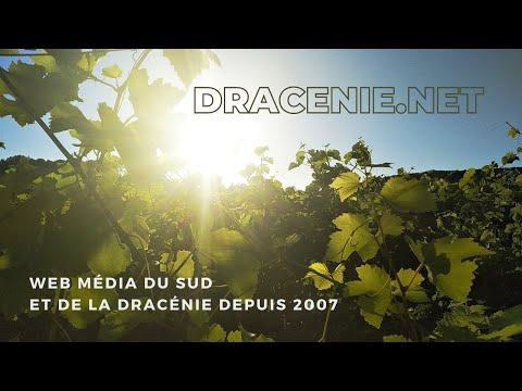 dracenie.net le Webzine: Basilic Swing au Château Roubine