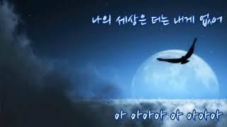 #안예은  ➿  달  그림자  (가사) 역린ost