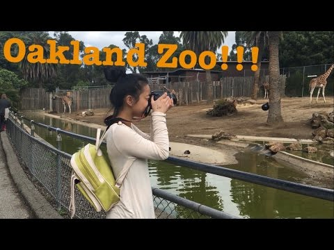 A Day In: Oakland Zoo