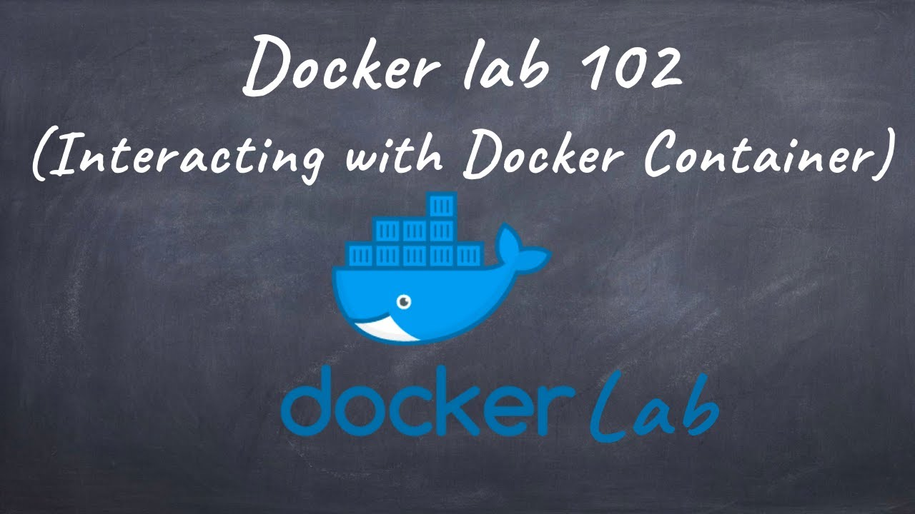 Free docker lab 102 (Interacting with Docker Container)