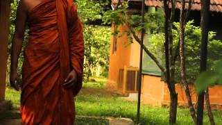Ven. Athuraliye Rathana Thero - Meditation Programme ix