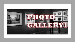 Art Photos Gallery 1, Professi…