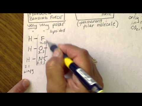 Hydrogen Bonding vs Dipole-Dipole vs Dispersion forces of attraction between molecules