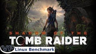 Shadow of the Tomb Raider Linux Native vs Proton