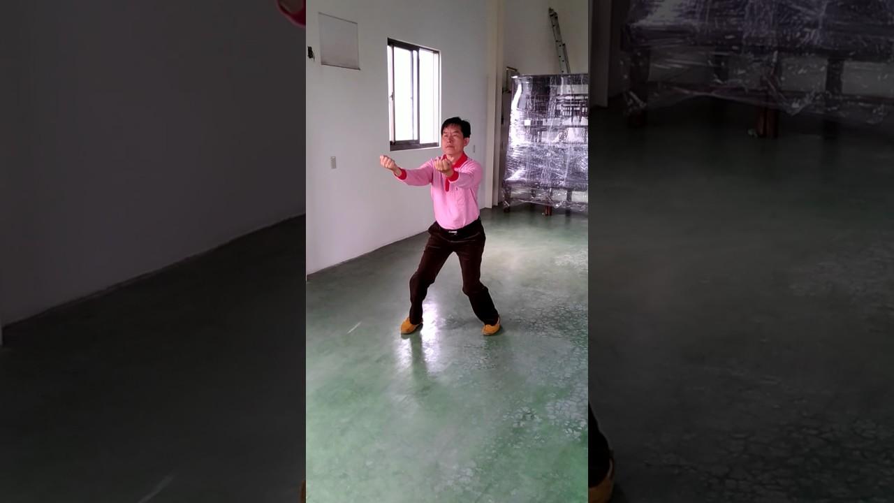 臺中西屯二高白鶴拳(三戰) - YouTube