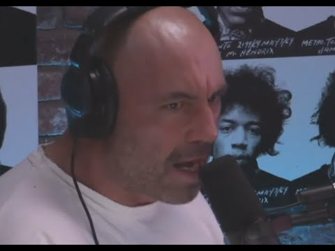 Joe Rogan And Brendan Schaub Straighten Dumbass