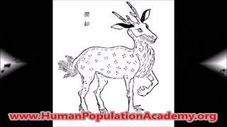 Описание женщин родившихся 7 октября не високосных годов из Каталога человеческой популяции