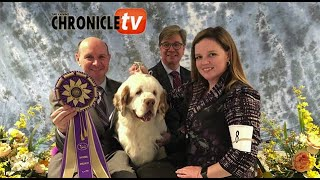 What to Look for in the Clumber Spaniel  Doug Johnson & Jamie Hubbard of Clussexx Kennel