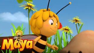 [11.21 MB] Maya, commander in chief - Maya the Bee - Episode 50