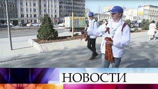 Десятки тысяч волонтеров вышли на улицы, чтобы раздать Георгиевские ленты.