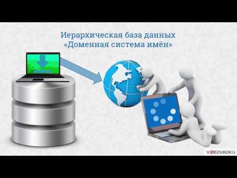 Видеоурок по информатике «Иерархические БД»