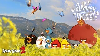 Angry Birds 2 | Live Butterflies - Summer Special