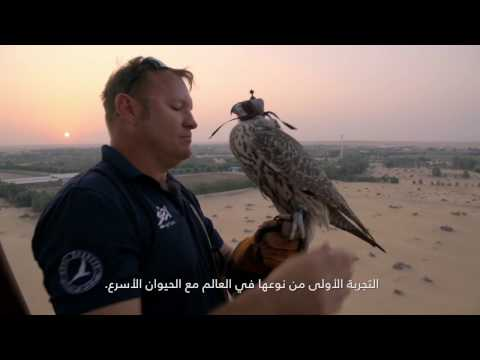 MYLAND | Land Rover | World-First Hot Air Balloon Falconry Adventure Documentary