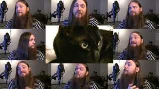 Repeat youtube video My Cat Knows What You Do In The Dark - Fall Out Boy Parody; Acapella
