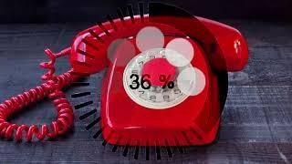 телефонный прикол. неадекватная дама пытается устроится на работу