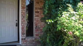 Arlington Texas $99,000 House for Sale