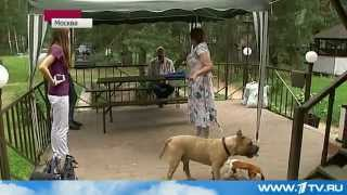 ЧП в Первоуральске на детской площадке 06.07.2012.mp4