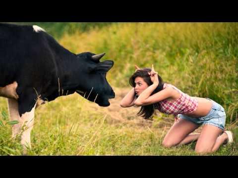 Boney James / Rick Braun - Grazin' In The Grass *k~kat jazz café*The Smoothjazz Loft