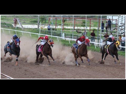 Carreras de Caballos en el Hipodromo de Hermosillo 02 de Agosto 2017