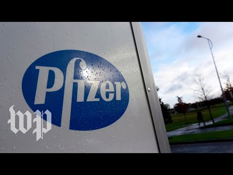 Pfizer had clues its drug could prevent Alzheimer's. What happened?